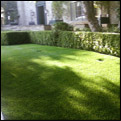 pet synthetic grass temecula
